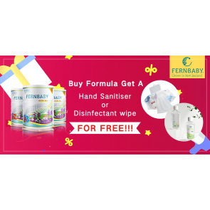 Formula + Disinfectant wet wipes